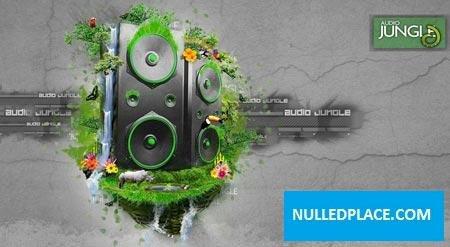 Audiojungle Bundle Vol 4 Free