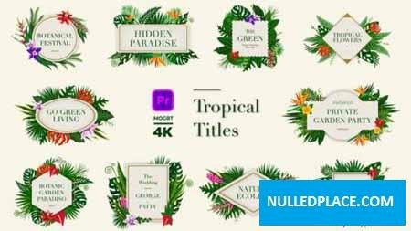 Videohive Tropical Titles 24003189 Free